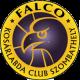 Falco Vulcano